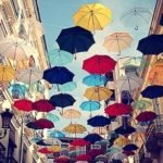 Обязательные атрибуты осени – зонты 2011