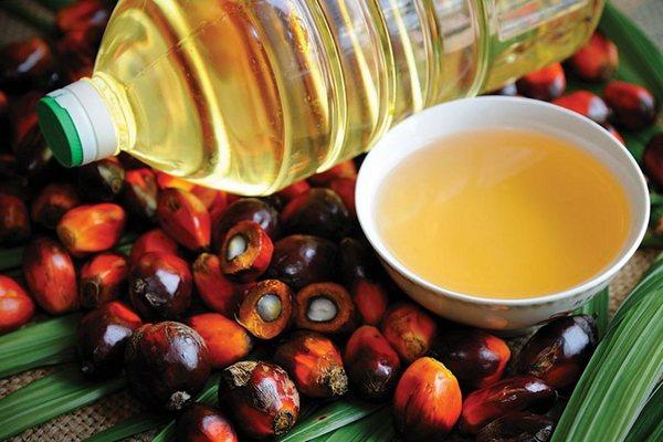 Почему вредно пальмовое масло