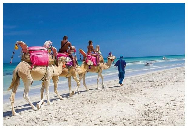 Курорты Туниса. На Джербе предлагают варианты активного отдыха