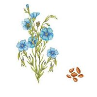 Льняная ткань. 5 преимуществ