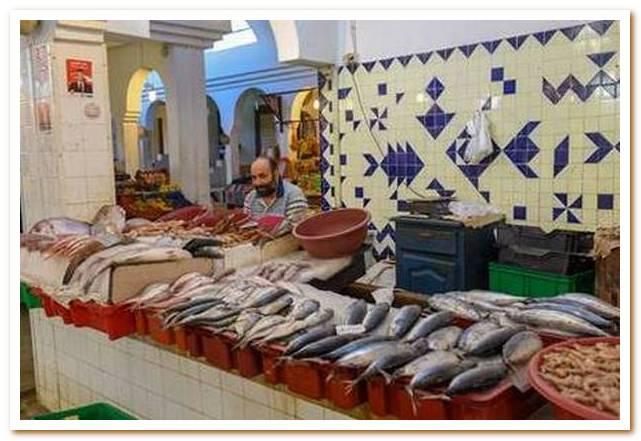 Тунисская кухня - ставка на свежесть
