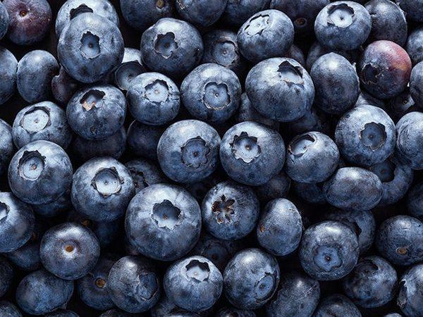 Рейтинг самых полезных фруктов и ягод. Топ 11. Черника