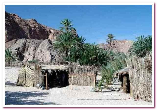 Отдых в Египте. Поселение бедуинов Эйн-Худра