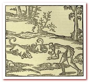 Таксы на охоте Жак дю Фуйю: «Венери» 1560 г.