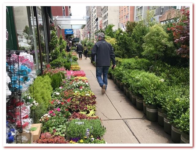 Район Челси Нью-Йорк. Цветочный рынок Челси