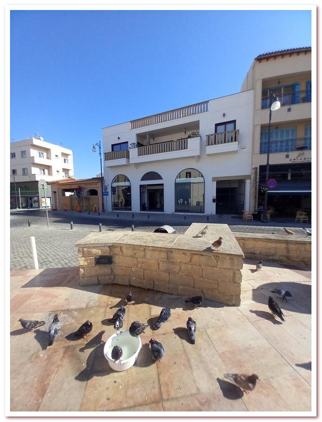 Голуби купаются на площади перед Церковью Святого Лазаря