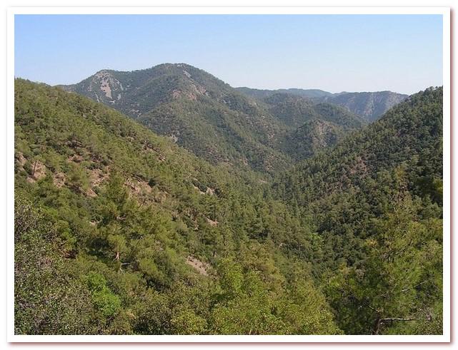 Курорты Кипра. Гора Олимбос