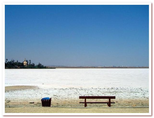 Курорты Кипра. Соленое озеро Ларнаки