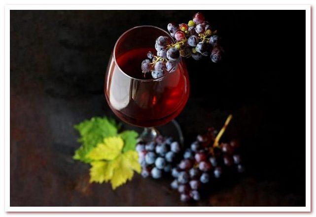 Кухня Кипра. Вино — особый элемент кипрской гастрономии